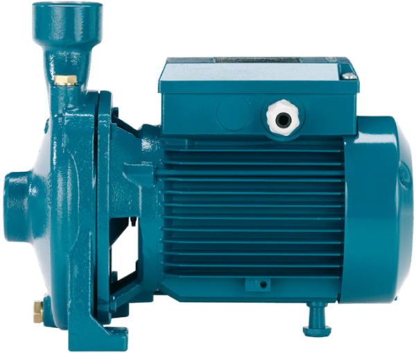 Calpeda NM End Suction Pumps